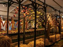 i-utställningen-m-träd