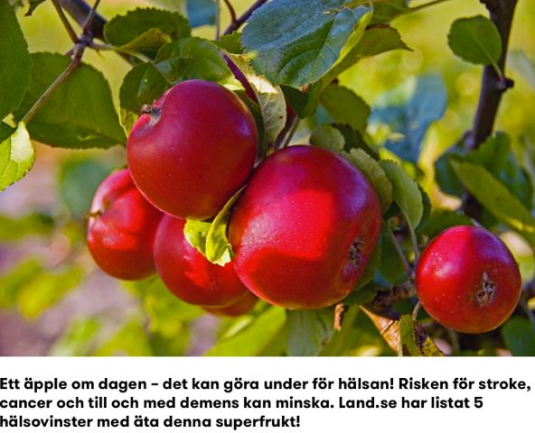 land.se 1